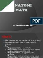 anatomi-mata.pdf