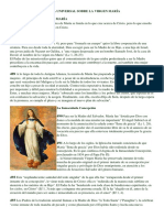 CATECISMO DE LA IGLESIA UNIVERSAL SOBRE LA VIRGEN MARÍA