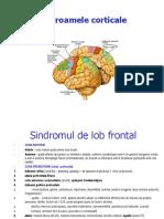 Sindroamele corticale 15
