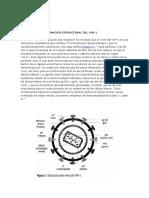 Mecanismos de Linfocitopenia CD4