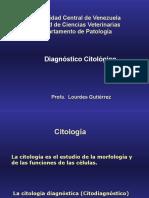 Clase Citologia 2006. Lourdes