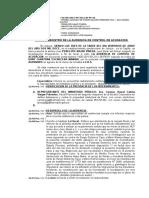 CONTROL DE ACUSACION.doc