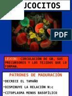 Clase de Leucocitos Postgrado