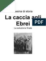 Tesina Di Storia_la Soluzione Finale