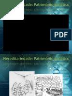 1- Hereditariedade - Mono e Dihibridismo
