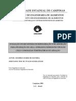 Tese - Ciclo de Adsorção.pdf