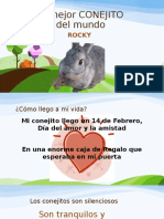 POWER POINT Animal Favorito