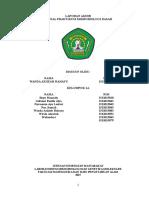 laporan mikrobiologi dasar