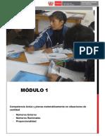 modulo 1_Aspectos didacticos y curriculares.pdf