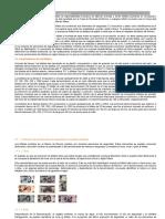 Características de Los Billetes Mexicanos