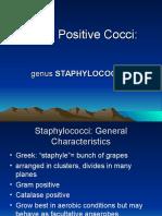 Staphylo