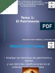 tema 1 patrimonio sem 1.pptx