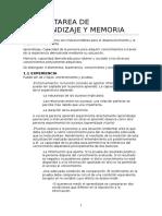 Primer Parcial MEMORIA UCM PSICOLOGÍA