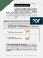 ACTIVIDAD 1(Psic.desarrollo II) Distribuido