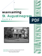 Maintaining St. Augustine Grass Lawns