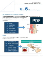 Untit 5. Musculoskeletal System