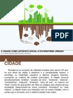 Cidade Como Artefato Social e Ecossistema Urbano