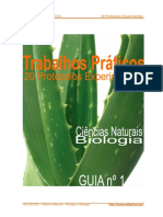 20 Protocolos Experimentais - Biologia