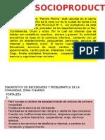 Proyecto Socioproductivo PSP