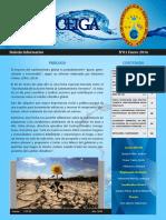 BOLETIN ENERO - 2016.pdf