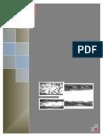 Flujo Multifasico horizontal y correlaciones