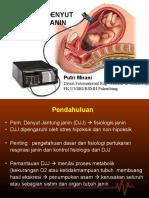 Fisiologi Denyut Jantung Janin