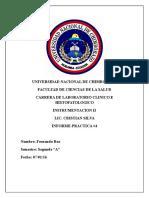 Informe-Instru Cam Neubauer