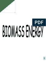 2. Biomass Energy