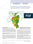8.- PARA SABER MÁS.pdf