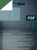 Avian Influenza Ppt
