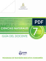 Ciencias Naturales Guia Del Docente
