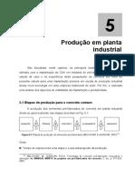 H_Capitulo5_Producao.pdf