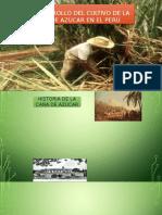Desarrollo de la caña de azucar en el Peru.pptx