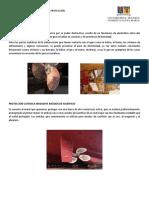 Tipos de Corrosión y Métodos de Protección(Manuel Brito)