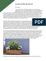 Article   Que Es Bueno Para El Olor De Pies (4)