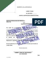 Formato Guia de Carta de Aceptacion de Ss