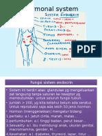 Hormonal System