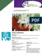 Catalogo Actividades PSMMA