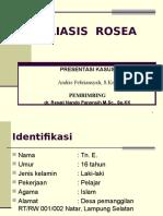 P. ROSEA