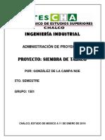 Proyecto Cris