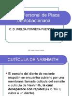 Control Personal de Placa - Completa