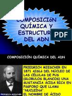 Estructura, Organización y Función de Los Ácidos Nucleicos