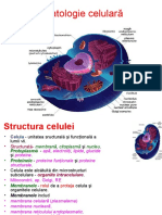 Patologie celulera