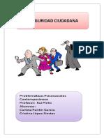Inseguridad Ciudadana Final