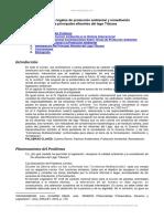 Fundamentos Legales Proteccion Ambiental y Remediacion Principales Afluentes Del Lago Titicaca