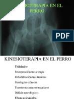 Kinesioterapia en El Perro