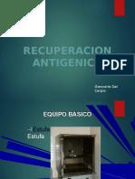 (550988953) recuperacion antigenica