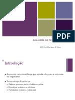 Anatomia de Pequenos Animais.pdf
