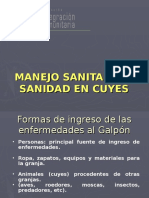 MANEJO SANIDAD CUYES