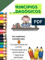 principiospedagogicos-120608234941-phpapp01